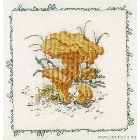 Bonheur des Dames, kit chanterelle commune (BD1684)