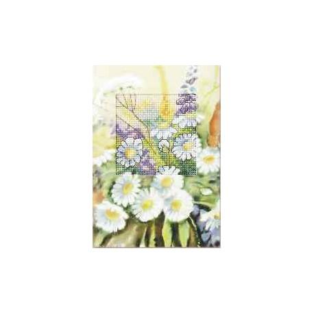 Orchidea, kit Carte de voeux Paquerettes (OR6211)