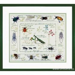 Bonheur des Dames, kit les insectes (BD1192)