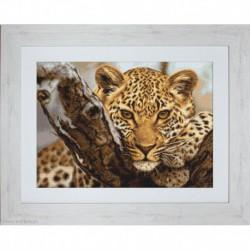 Luca-S, kit canevas petits points Leopard (LUCAG525)