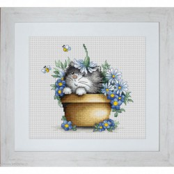 Luca-S, kit Kitten in flowers (LUCAB1048)