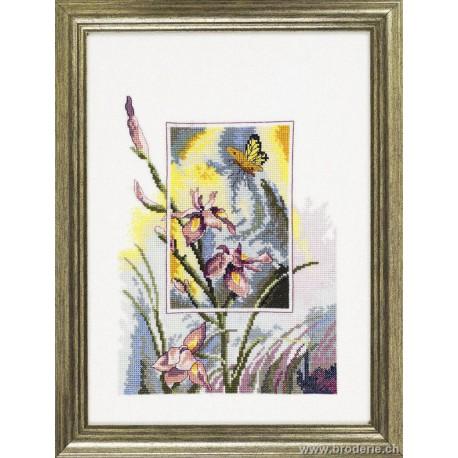 Permin, kit Papillon et iris (PE12-3196)