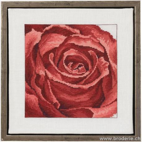 Permin, kit rose (PE70-1150)