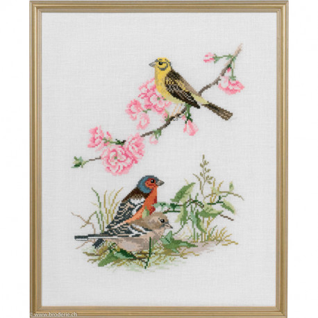 Eva Rosenstand, kit les oiseaux (EV12-735)