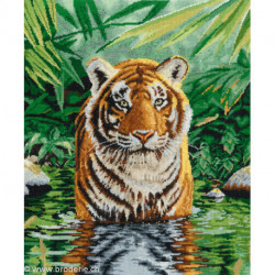 DMC, kit Tiger Pool (DMC-BK1151)