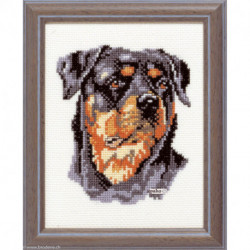 Pako, kit Tête de chien (PA210.857)