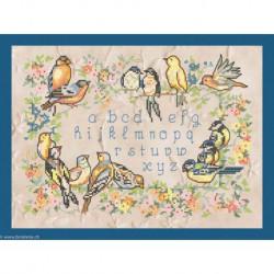 Princesse, kit ABC oiseaux (PR5678B)