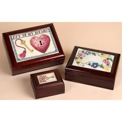 Sudberry, Boîte de présentaion brune (SU99941)