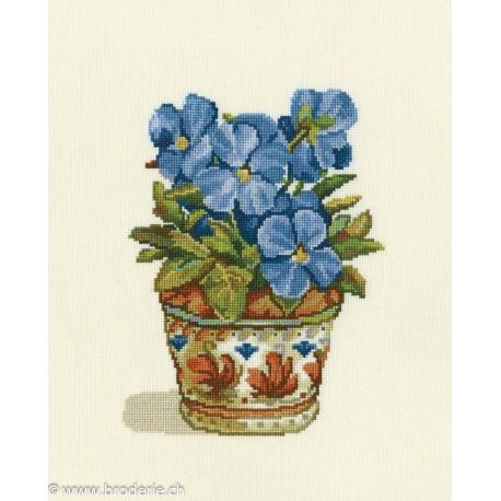 RTO, kit Blue Violets (RTOC188)