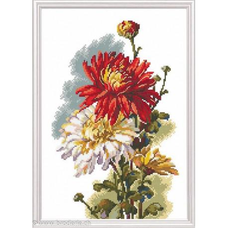 RTO, kit Chysanthemum rouge (RTOM516)