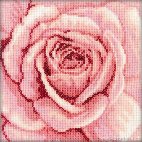 RTO, kit coeur de rose rose (RTOC070)
