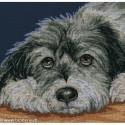 RTO, kit Dog Melancholly (RTOM413)