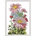 RTO, kit pink Chysanthemum (RTOM517)