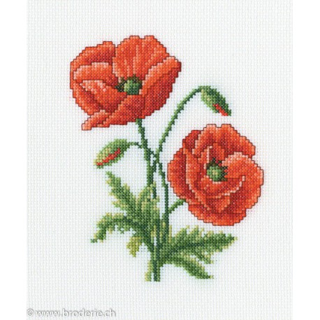 RTO, kit Red Poppies (RTOC182)