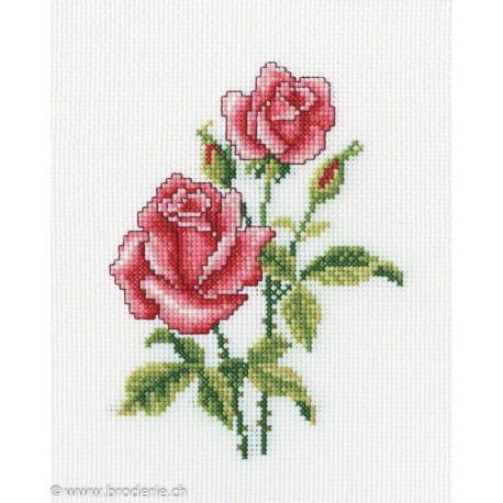 RTO, kit Roses (RTOC185)