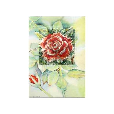 Orchidea, kit Carte de voeux Rose rouge (OR6228)